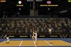 2012 Кролимпийский Волейбол